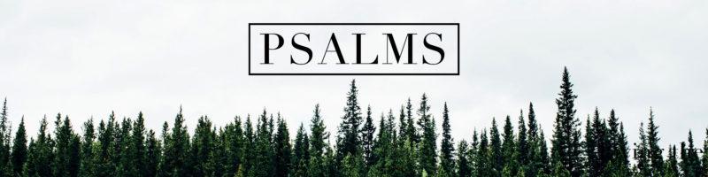 Sermon Audio – Elmwood Church